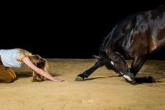 fotografia-modelos-caballos-705x470