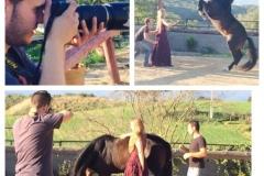 shooting-con-caballos-705x705
